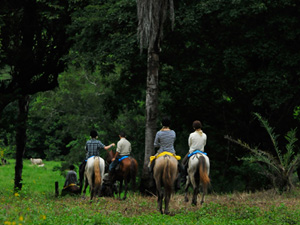 randonnée à cheval Costa Rica Alajuela photo 3