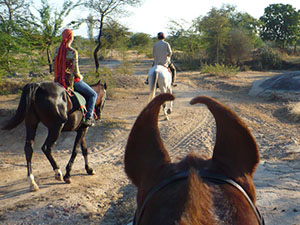 randonnée à cheval Inde Rajasthan photo 3