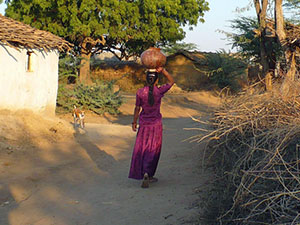 randonnée à cheval Inde Rajasthan photo 4