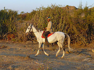 randonnée à cheval Inde Rajasthan photo 5